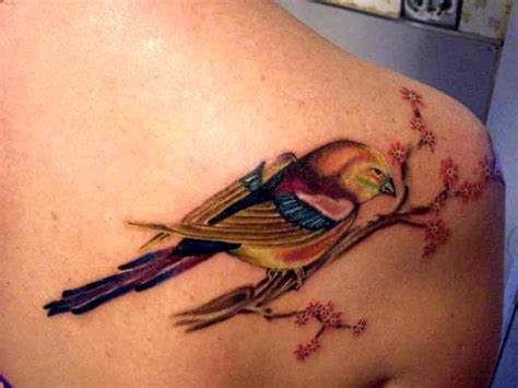 tropical bird tattoo designs ideas by bryan mccall
