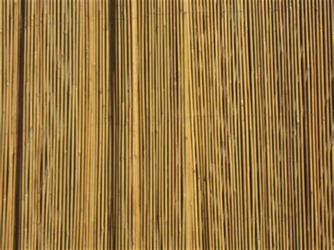 Bamboo Matting For Walls by Quality Bamboo And Thatch Wall Covering S Bamboo