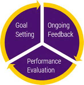 performance appraisals uni human resource services