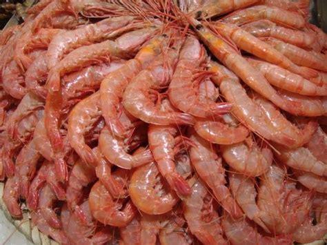 come cucinare i granchi di mare i crostacei