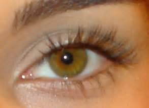 yellow eye color what is your eye color look closer morning makeup call