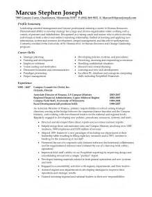 sle of a resume summary professional resume summary statement exles writing