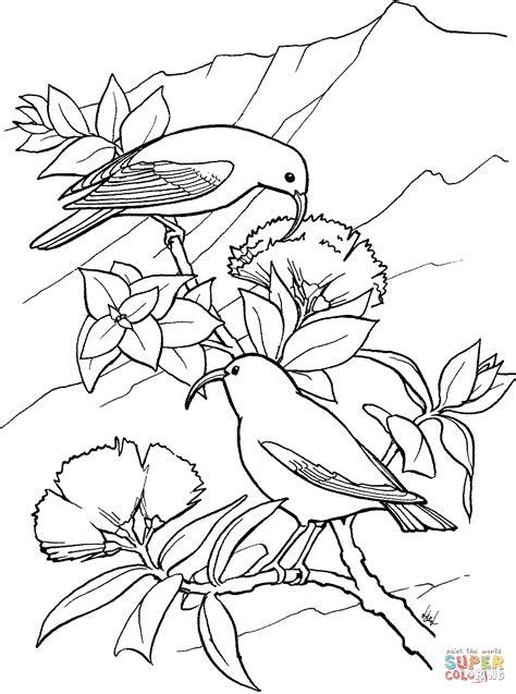 coloring pages of dodo bird dodo bird coloring pages coloring pages