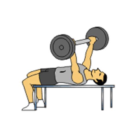 10 sets of 10 bench press 30 day workout plan weight training