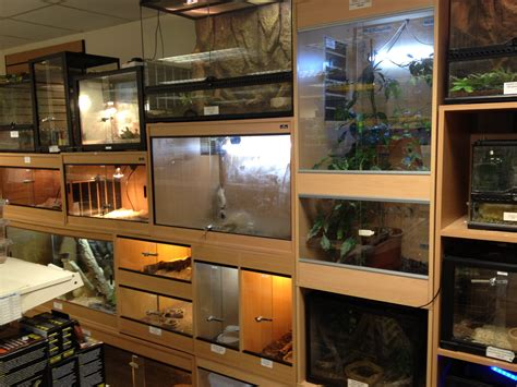 shoo for dogs hamster angell pets the friendliest pet shop in gloucester