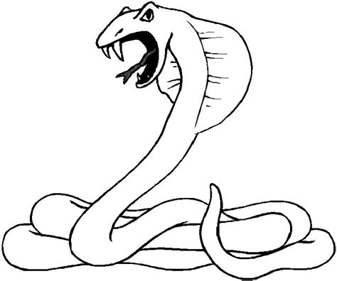 free coloring page of a snake free printable snake coloring pages for kids