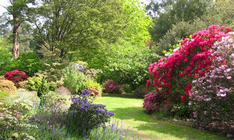 garten zierpflanze ferny creek ornamental gardens