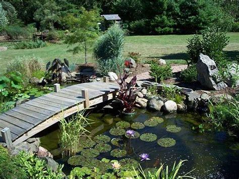 da giardino laghetti da giardino il verde come realizzare un
