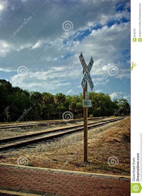 tracks in florida beautiful view of railroad tracks in florida vanis stock photos image 9159723