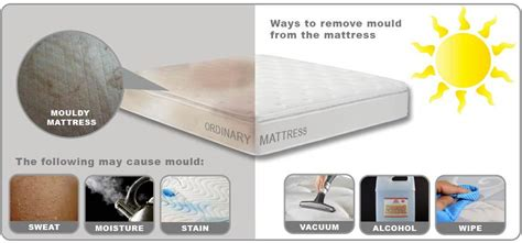 how to clean a wet bed how to remove mould from a mattress european bedding
