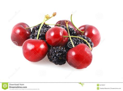 berries unlimited