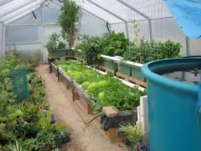 triyae backyard aquaponics greenhouse various