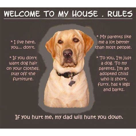 welcome to my house dog rules welcome to my house dog rules sign