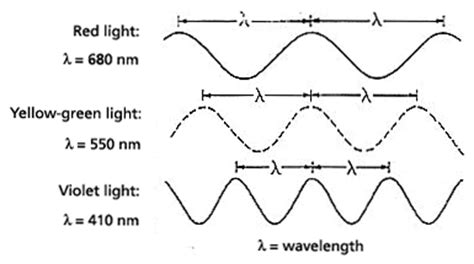Yellow Light Wavelength by Optics For The Optical Society Exploring The