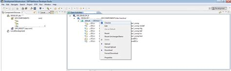 sap nwdi tutorial how to import sap projects into nwdi track sap blogs