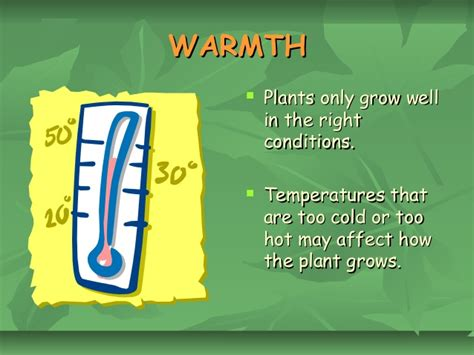 what of light do plants need t06 what do plants need to grow