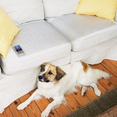 Contech Mat by Contech Mats For Dogs Or Cats By Mat At