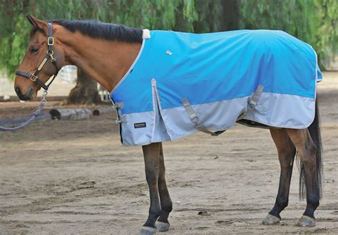 Turnout Blanket Clearance by Professional S Choice Equisential 600d Winter Turnout