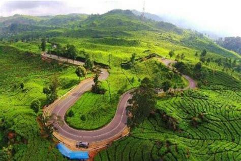 segarnya wisata  perkebunan teh rancabali ciwidey