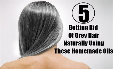 hair follicles in older women narrowing 25 best ideas about grey hair treatment on pinterest