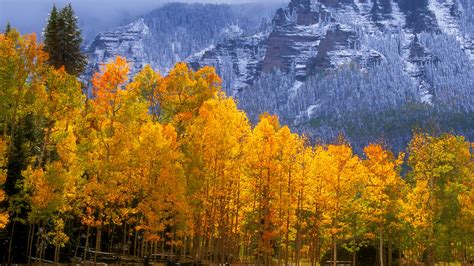 Aspen Background Check Colorado Wallpaper 15853 1920x1080 Px Hdwallsource