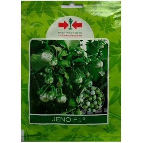 jual benih terong lalap hijau jeno f1 400 biji panah