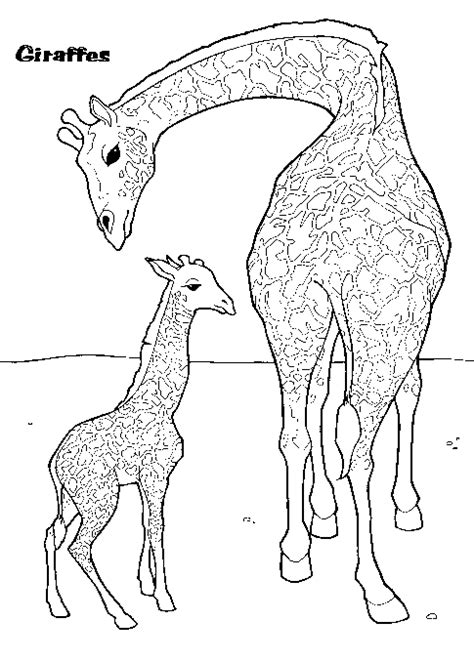 coloring pages of a baby giraffe coloring activity pages mother baby giraffes coloring
