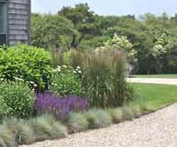 landscaping ideas for water conservation home tips for women