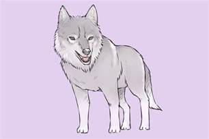 doodle wiki how 4 ways to draw a wolf wikihow