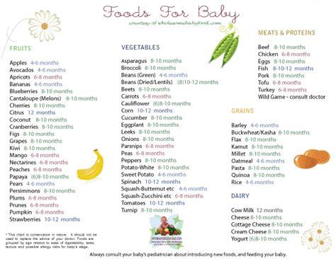 Blender Makanan Bayi Yang Bagus menu makanan bayi rumahan sesuai umur makanan bayi sehat