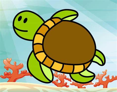 imagenes animales de mar animales del mar imagenes imagui
