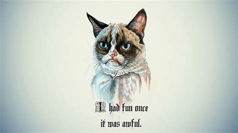 funny meme wallpaper  images
