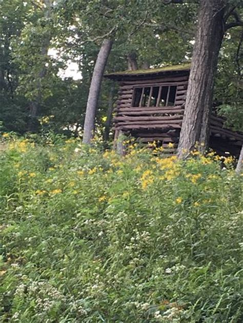 Watoga State Park Cabin Rentals by Watoga State Park Marlinton Wv Top Tips Before You Go