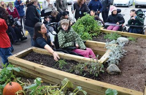 Gardening Needs 11 Best Images About Sensory Garden On Gardens