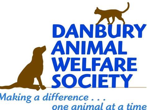 8 Ways To Support Animal Welfare by Support Danbury Animal Welfare Society On Giving Day