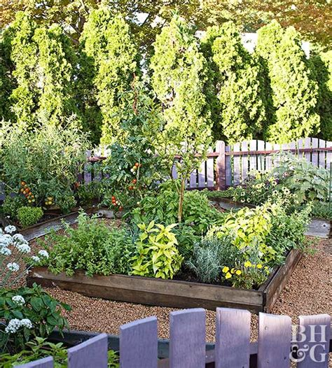 organic vegetable gardens tips for growing an organic vegetable garden