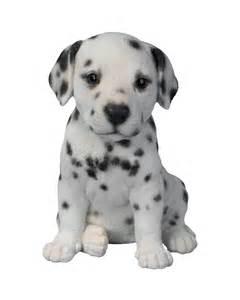 Commercial Patio Sets Pet Pals Dalmatian Puppy Vivid Arts Brands Mill Race