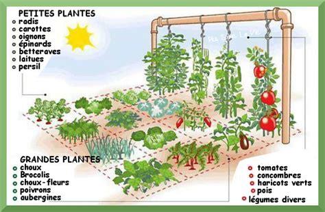 comment cr 233 er un jardin potager sur 1 m 232 tre carr 233
