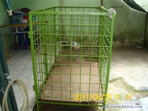 Jual Kandang Pagar Bandung dunia anjing jual anjing rottweiler jual murah