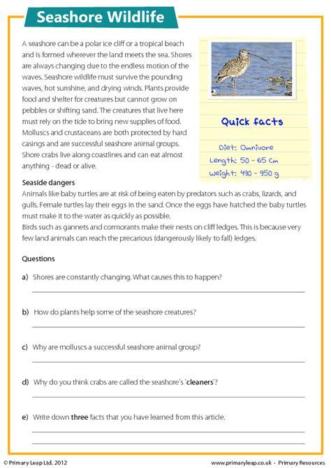 free printable reading comprehension worksheets year 6 seashore wildlife reading comprehension