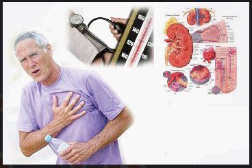 Agen Resmi Agaricpro obat darah tinggi tradisional agen resmi agaricpro