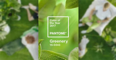 greenery code pantone color of the year 2017 greenery web creator box