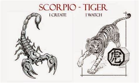 12 best scorpio chinese zodiac images on pinterest