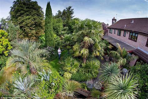 Two Bedroom House by The Man Who Grew A Jungle In His Garden Replaced Patio