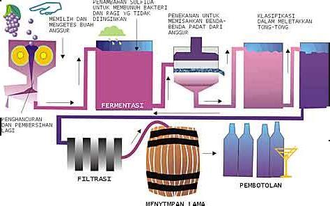 cara membuat yoghurt bioteknologi peran bioteknologi dalam industri makanan materi dan