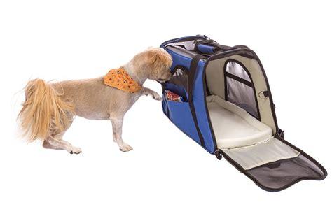 airline approved crate airline approved crate all pet cages