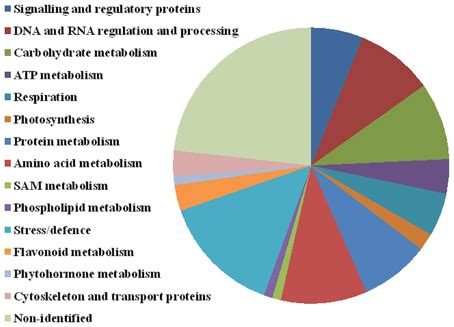 6 protein categories frontiers quantitative analysis of proteome extracted