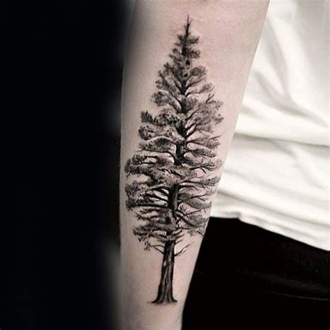 best 25 tree tattoos ideas collection of 25 best tree