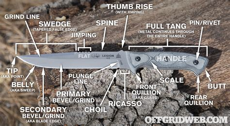 folding knife anatomy knife anatomy 101 infographic terms recoil offgrid