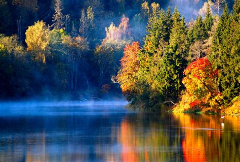 color reflections water reflection forest trees stones fall colors wallpaper